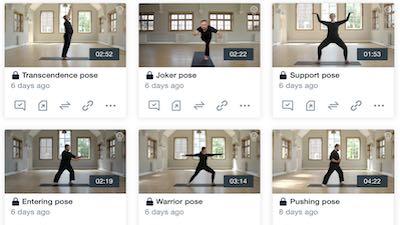 pro videos